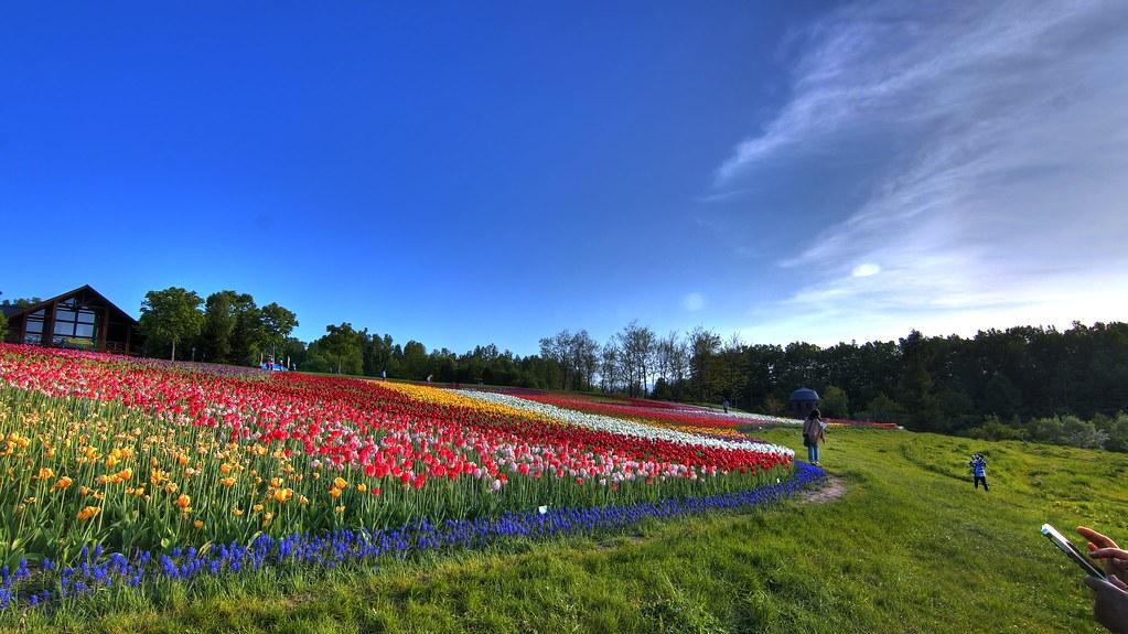 滝野すずらん丘陵公園 | 北海道札幌市南區滝野にある國営公園 ...