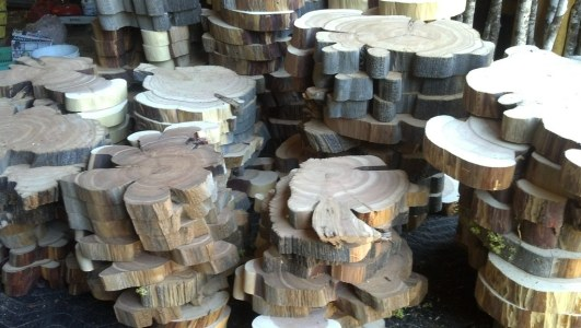 Juniper wood slices