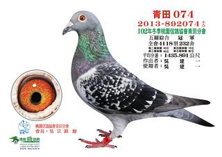 102年冬季-桃園信鴿協會青田分會   Sonia Chang   Flickr