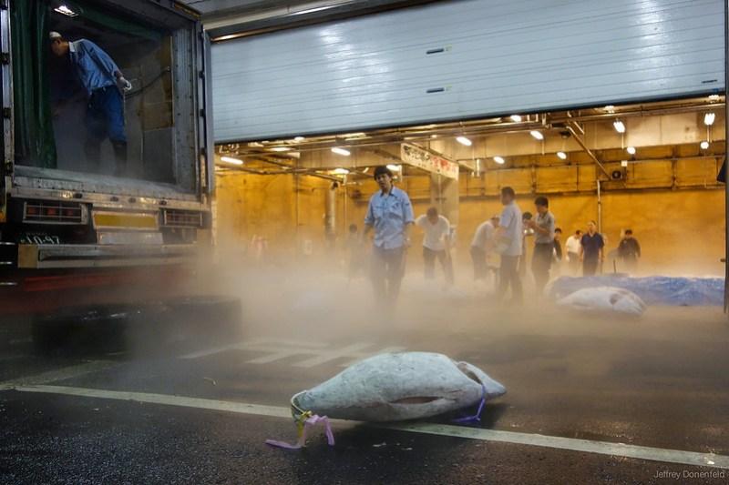 2013-06-24 Tsujiki Fish Market - DSC06304-FullWM