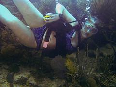 Culebra Diver