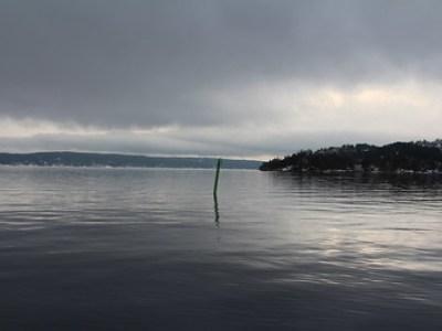 OL-pause i Oslofjorden 8.februar 2014