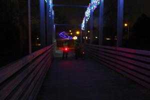 2014 11 Critical Mass 14 Watson Gdn bridge_300