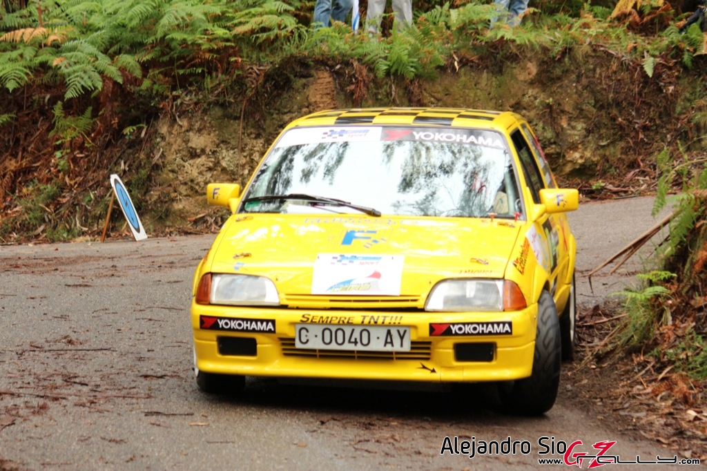rally_sur_do_condado_2012_-_alejandro_sio_108_20150304_1714166981