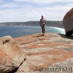 Viajefilos en Australia. Kangaroo 50