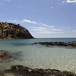 Viajefilos en Australia. Kangaroo 79