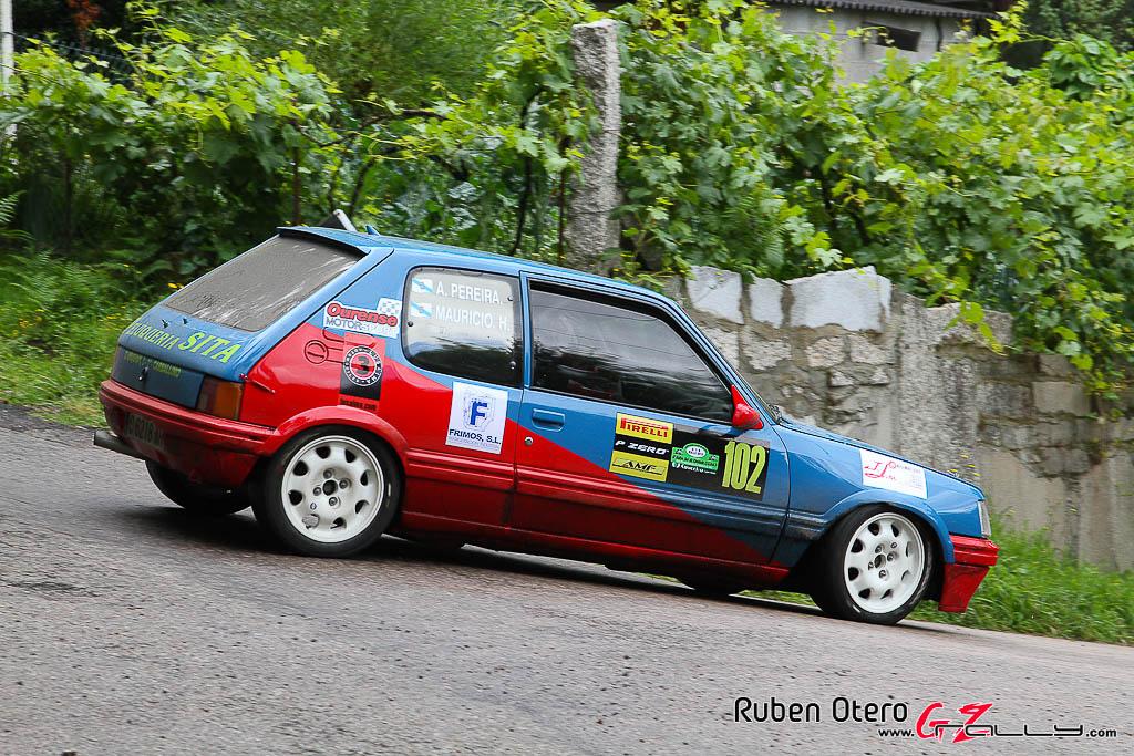 rally_sur_do_condado_2012_-_ruben_otero_72_20150304_1788602997
