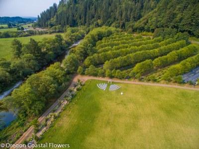 Hydrangea Ranch Wedding Venue