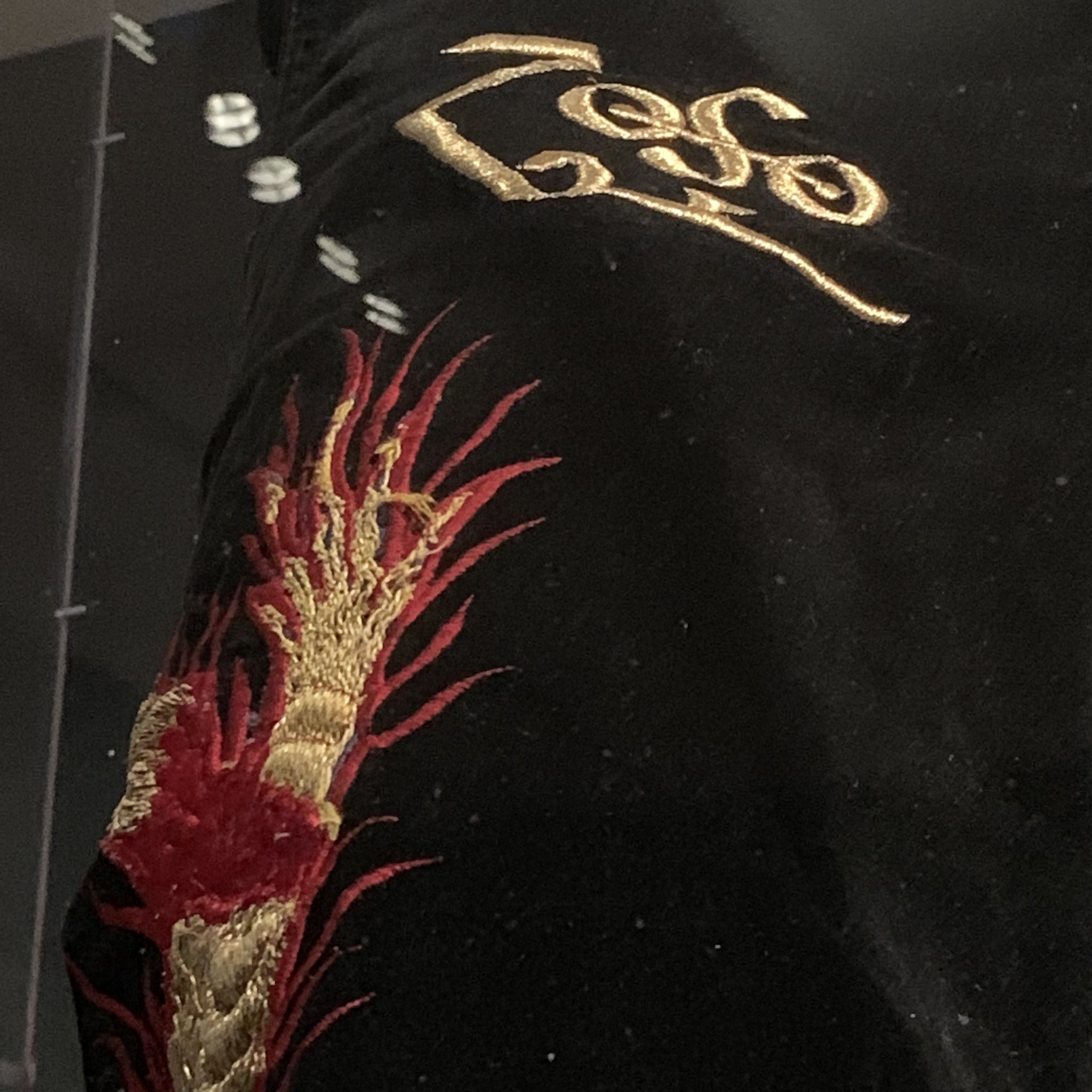 Detail on the famous Jimmy Page Dragon Suit (1975)
