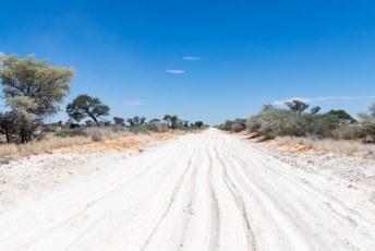 Op weg naar het Kgalagadi Transfrontier Park reden we ineens in fesh-fesh. Zeer poederachtig zand.