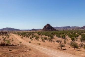 We vervolgden onze weg naar Twyfelfontein.