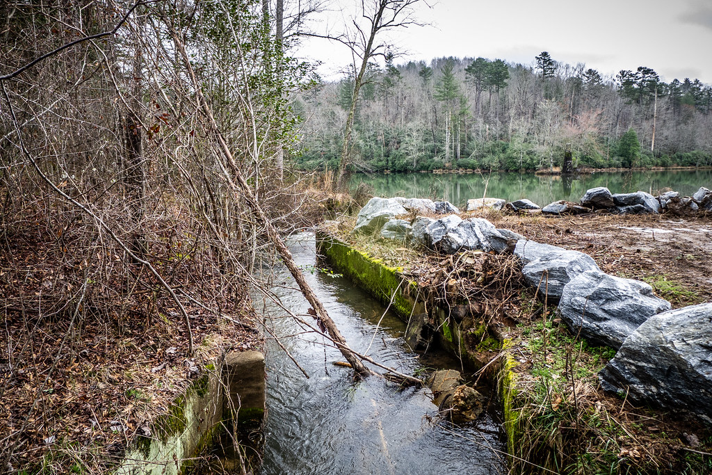 Tall Pines Preserve and South Saluda Church Cemetery-100