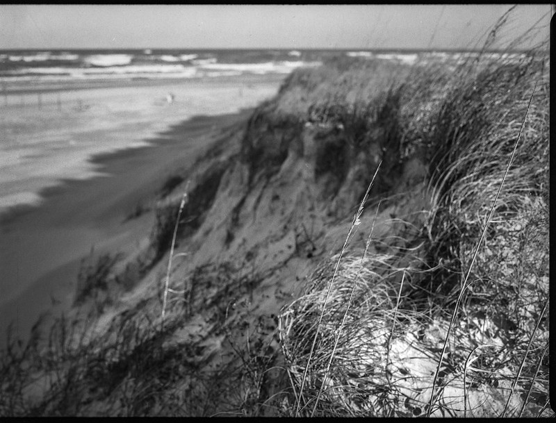 sand dunes, grasses, beach, Atlantic Ocean, Smyrna Dunes Park, New Smyrna Beach, FL, Mamiya 645 Pro, mamiya sekor 90mm f-2.8, 1.29.19-2