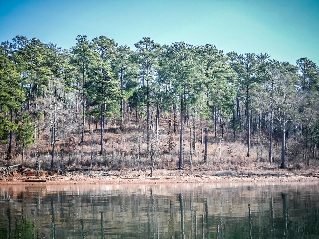 Clark Hill Reservoir-56