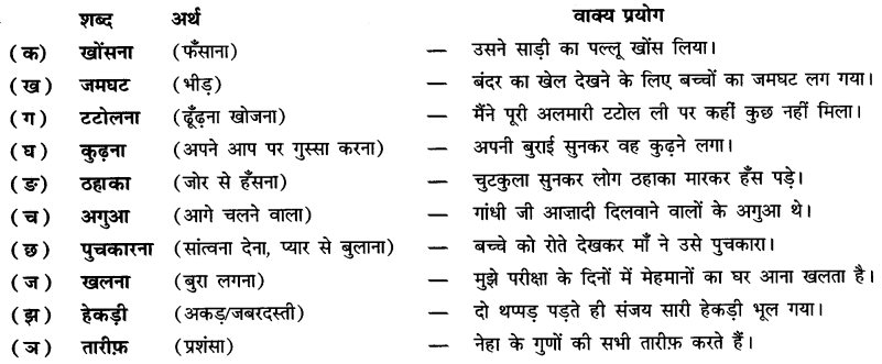 NCERT Solutions for Class 6 Hindi Chapter 9 टिकट अलबम 1