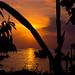 Ubatuba Sunset