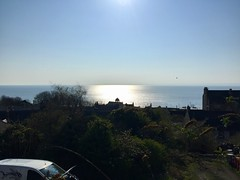Kinghorn Morning