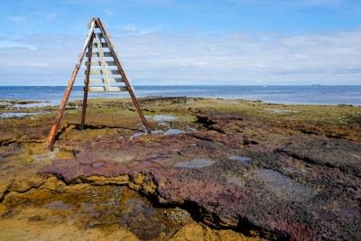 Shipping marker at Ricketts Point #marineexplorer #GSRfieldtrip #UNSWbees