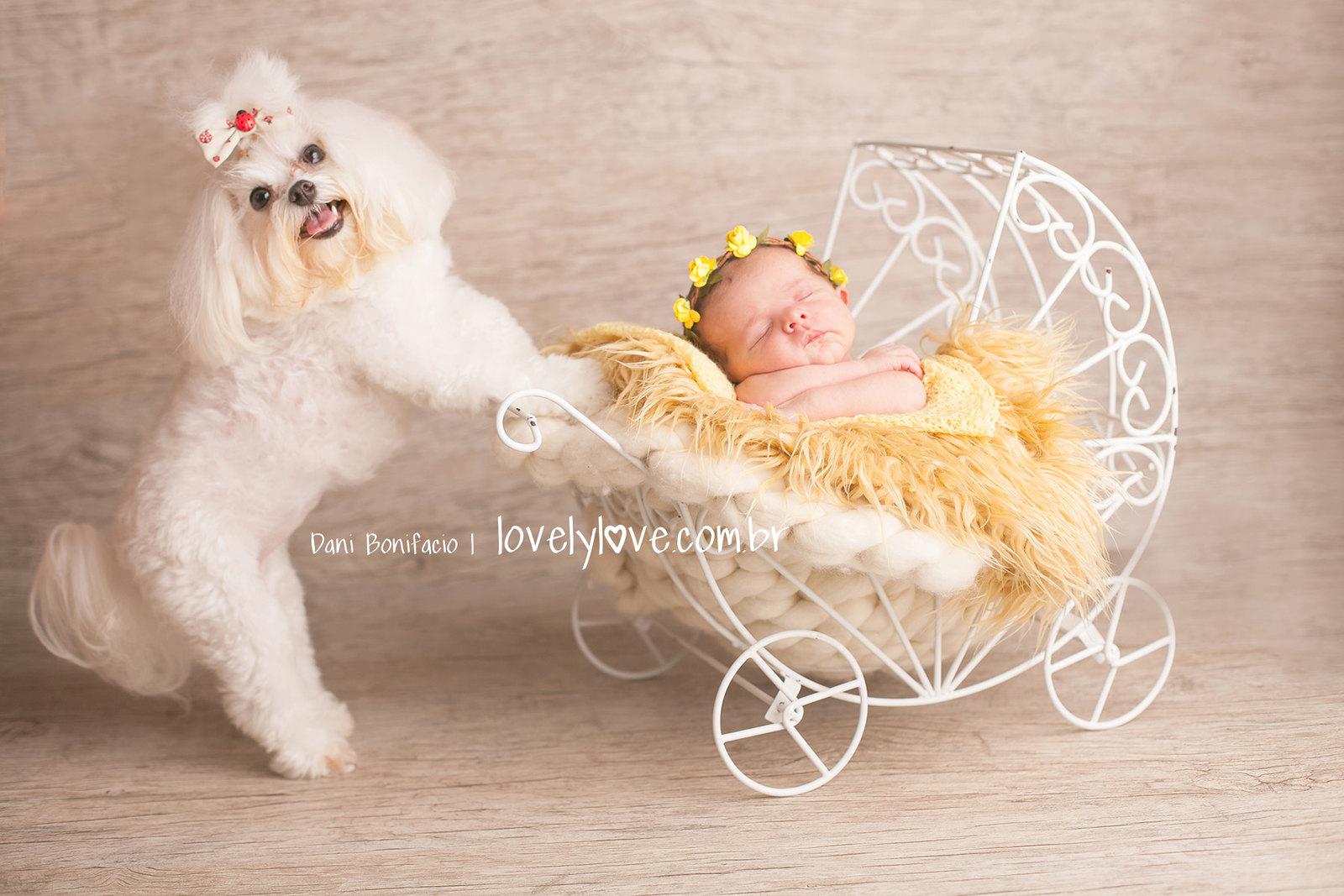 lovelylove-danibonifacio-newborn-acompanhamentobebe-ensaio-fotografia-foto-fotografa8