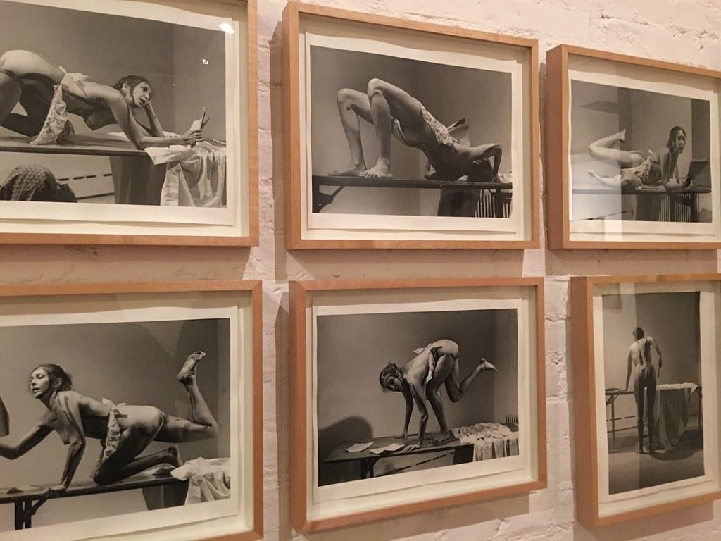 Carolee Schneemann: Kinetic Painting @ MoMA -- February 2018