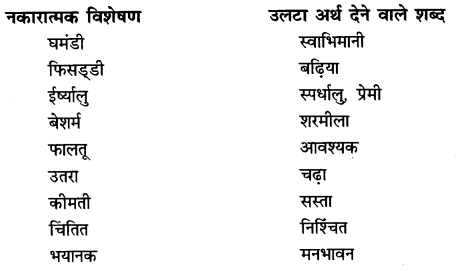 NCERT Solutions for Class 6 Hindi Chapter 9 टिकट अलबम 2