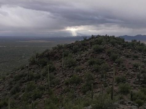 Brown Mountain Trail
