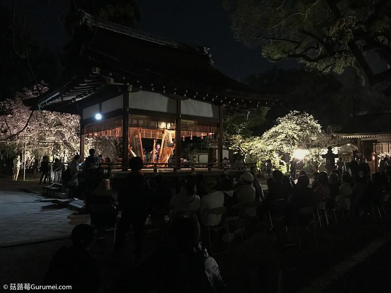 打工度假-賞櫻巡禮-497