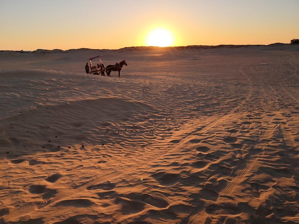 Travesia atardecer ruta en carro y caballo al Desierto del Sahara Douz Tunez 03