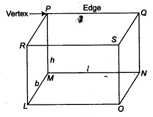 Surface Areas and Volumes Class 9 Notes Maths Chapter 13 1