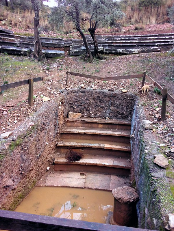 They excavated this small part of the theatre.  Looks like it's in great shape under all that dirt. by bryandkeith on flickr