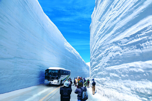 110 Tateyama Kurobe Alpine Route (Snow Walls)