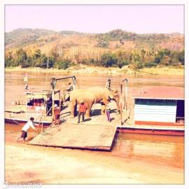 Laos - 0535
