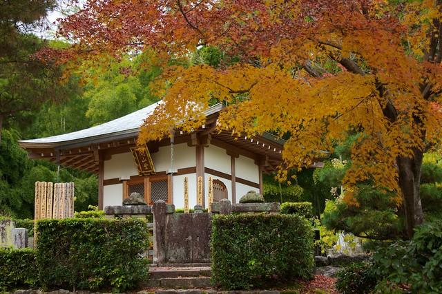 Jōjakkō-ji Temple 22
