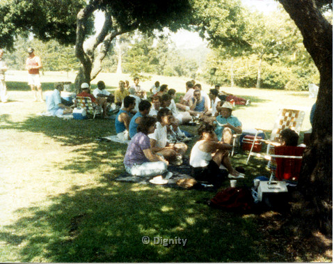 P104.052m.r.t Dignity Picnic 4th of July: Large group of people sitting under the shade in the park