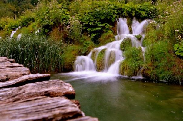 Wood and Falls