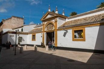 Palaciao de Dueñas, één van de belangrijkste historische huizen uit de 15de eeuw . O.a. Antonio Machado Ruiz, een poëet is hier geboren.