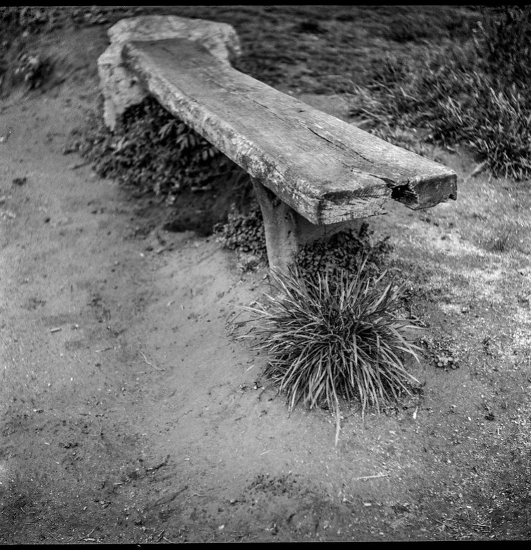 old wooden bench, grass cluster, dirt, riverbank, French Broad River Park, Asheville, North Carolina, Ricohflex DiaM, Arista.Edu 200, Ilford Ilfosol 3 developer, early April 2018