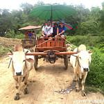 Lucia en el Norte de Tailandia, Viajefilos 163