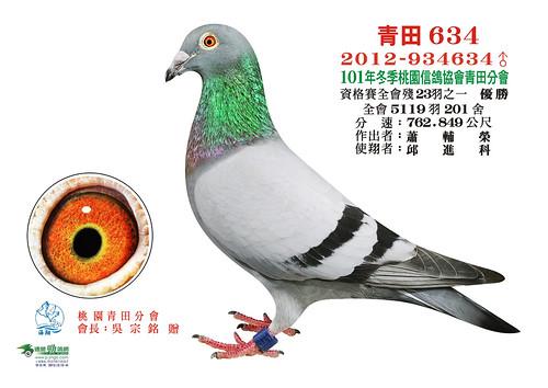 101年冬季-桃園信鴿協會青田分會   www.p-jingo.com   Sonia Chang   Flickr