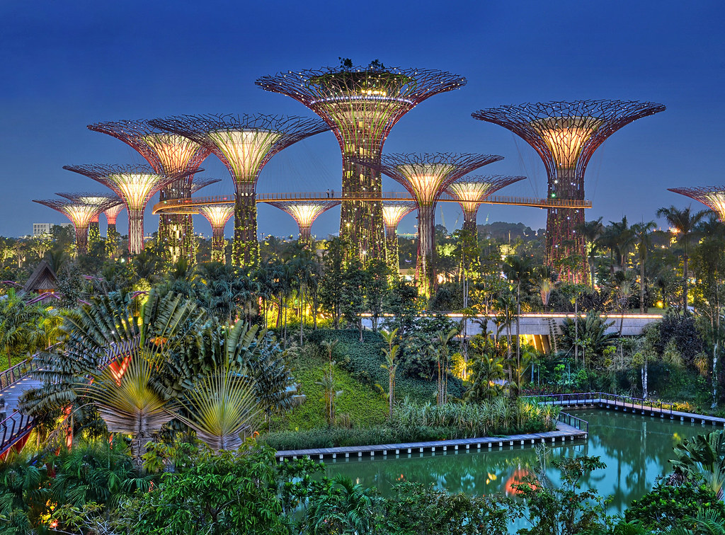 From The Dragonfly Bridge At Gardens By The Bay Supertree