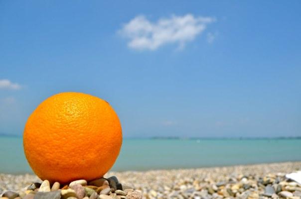 Sunbathing Orange