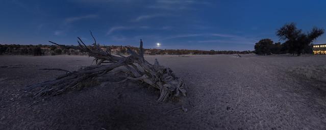 Ausblick im Mondschein