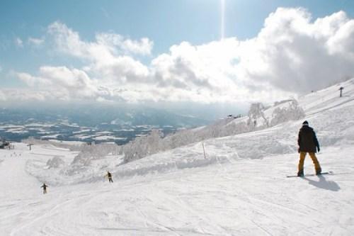 NISEKO Powder Snow