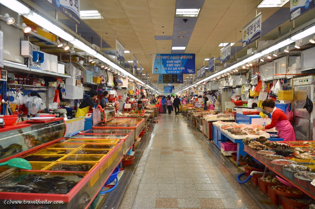 Places to visit in Busan -Jagalchi Market-30