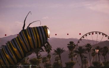 Coachella-2015-CA-38-of-75