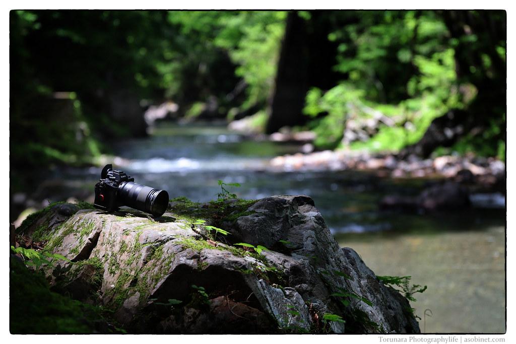 Canon EOS KISS M-IMG_4767-Edit-