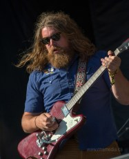 resized_RTS-2013-The-Sheepdogs18