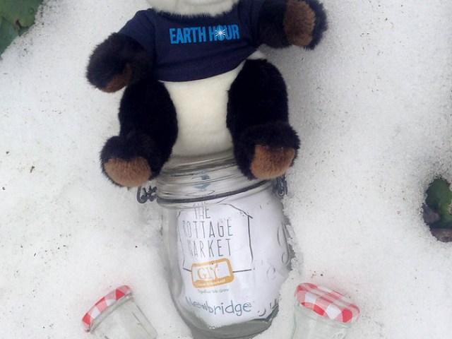 © Earth Hour-Ireland
