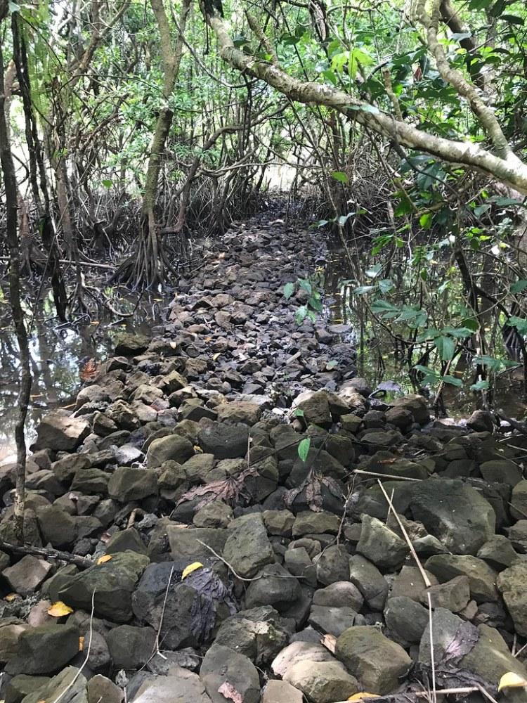 Milad, Palau