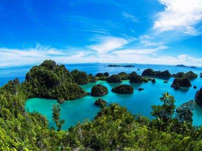 Liveaboard Diving Cruises in Raja Ampat, Indonesia   Dive ...